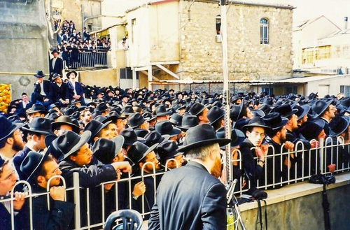 Partial view of the crowd at the levaya 2